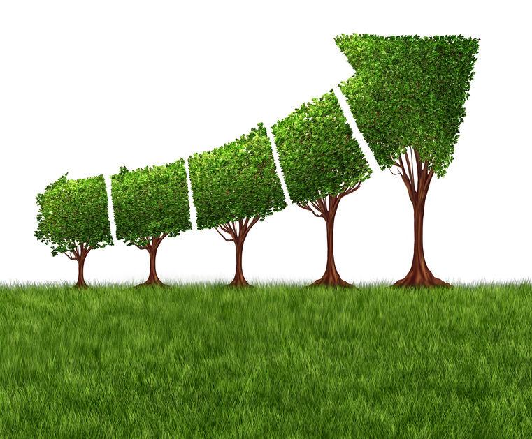Timberland Investment Returns
